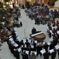 Reinaldahuis te Haarlem 14-12-2013